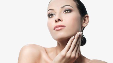 La piel y sus características